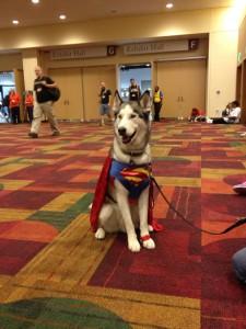gencon_superdog